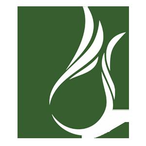 Fakultas dan Program Studi Di POLNES (Politeknik Negeri Samarinda)